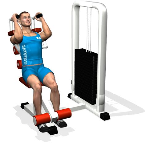 ab crunch machine involved muscles during the abdominals work out 3 ab crunch