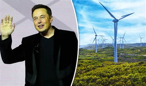 elon musk biography australian tesla to install world s largest batteries in australia to