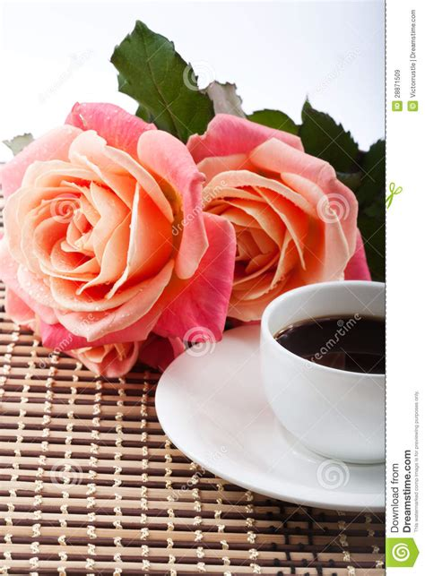 fiori coffee flowers and coffee royalty free stock images image 28871509