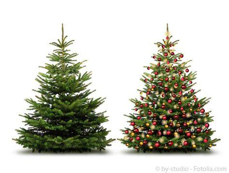 weihnachtsbaum wie echt der weihnachtsbaum wettbewerb 2014 der gartenhaus gmbh