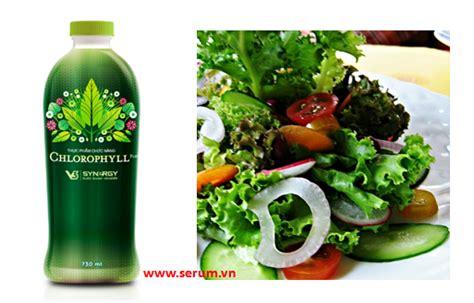 Synergy Chlorophyill Plus n豌盻嫩 di盻 l盻 c synergy chlorophyll plus synergy serum
