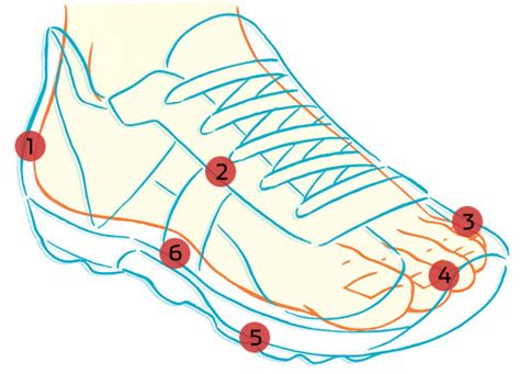 proper fit for running shoes the exercist how to buy the right running shoe from