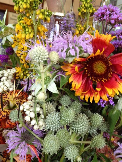 109 best images about my wildflower cutting garden on