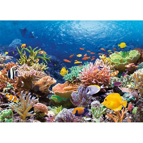 Under The Sea Wall Mural puzzle fonds marins planet puzzles
