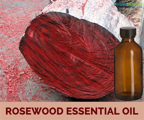 Rosewood Essential by Rosewood Essential Benefits