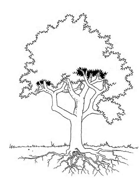 coloring page tree rex free coloring pages of tree of life