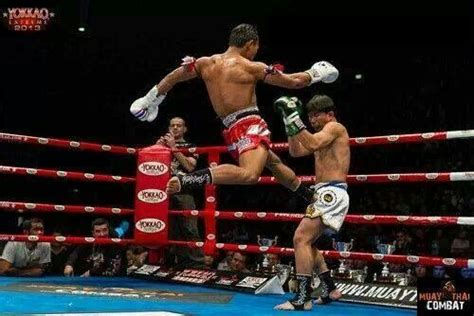Kaos Sport Boxing Muay Thai Kick Boxing 1115 Best Images About Muay Thai On