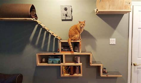 Construire un mur pour chat   Étagère et perchoir pour