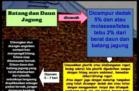 Produksi Ternak Ruminansia pupuk organik peningkatan kualitas usaha ternak