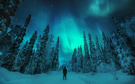 lapland finland northern lights on the hunt for the northern lights visitfinland com