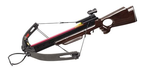Cross Bow wood hd compound crossbow ships free