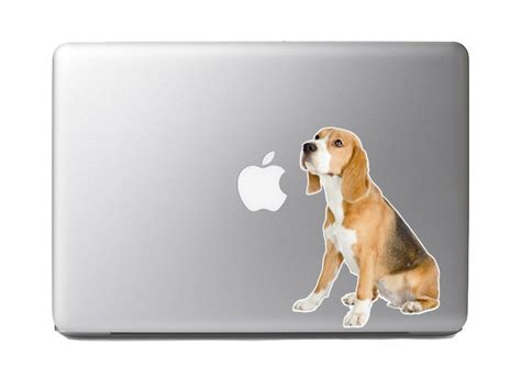 Sticker Macbook Pro And Air Relax Rina Shop fluffy animals 5 beagle looking away vibrant high resolution color vinyl