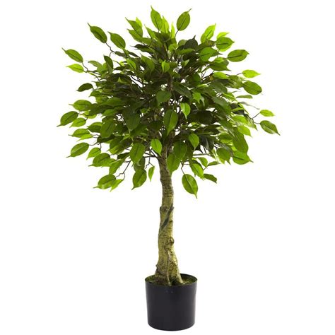nearly 3 ft ficus silk tree 5298 the nearly 3 ft uv resistant indoor outdoor ficus