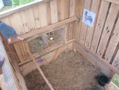 Chicken House Floor by Inside Chicken Coop Floor Chicken Coop Design Ideas