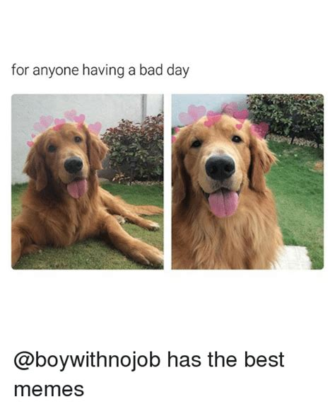 Having A Bad Day Meme - for anyone having a bad day has the best memes bad meme on me me