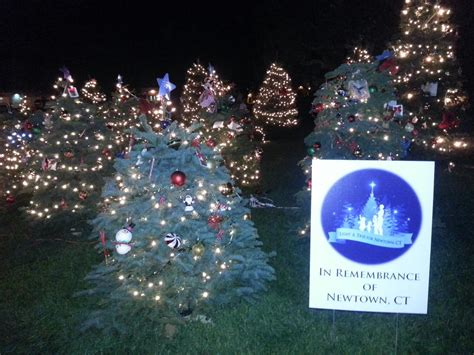 local christmas tree memorial honors newtown victims