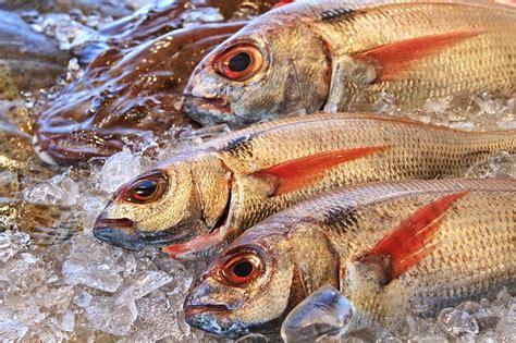 alimenti fosforo quali sono gli alimenti pi 249 ricchi di fosforo le