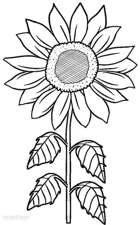 lihat  gambar sketsa bunga matahari drawings art