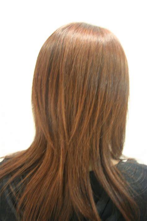 plated strait back hairstyles long straight hair with short layers back view www