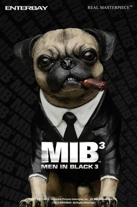 mib pug name 20 best black images on in black and chang e 3
