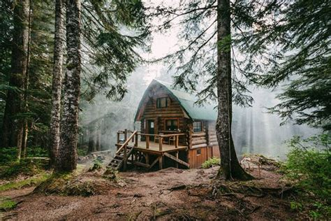 secluded cabins in the woods that are for a