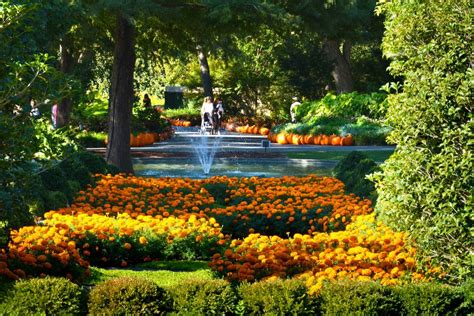 dallas botanical garden best botanical garden winners 2016 10best readers choice