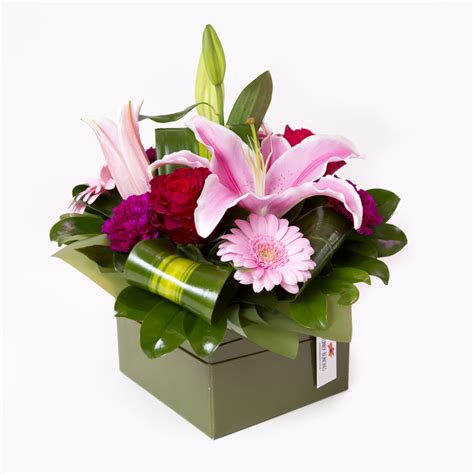 Joda Pink By Astrid Shopping astrid all flowers flowers funky bunches