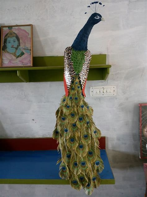 peacock wall art  waste paper craft