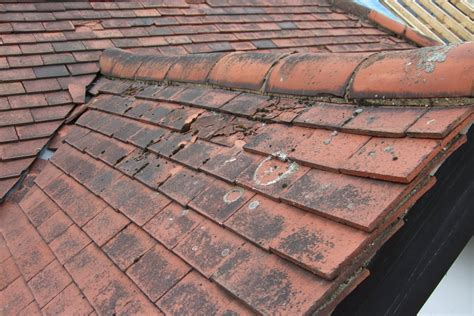 Types Of Roof Tiles Types Roof Tiles Roof Tiles Metal Roofing Is Primarily Thought Of As A Lowslope Roofing