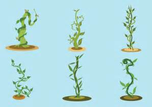 The And The Beanstalk by The Beanstalk Vector Free Vector Stock