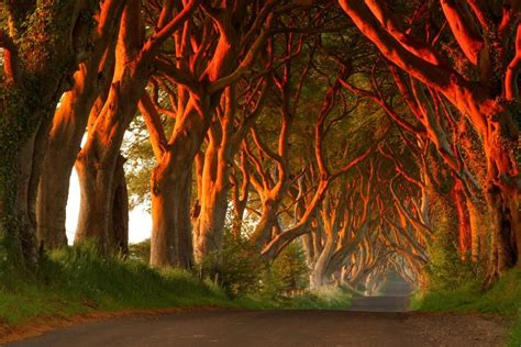 glitter wallpaper northern ireland game of thrones essential guide to the real seven kingdoms