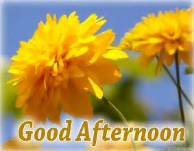 good afternoon pictures ecards