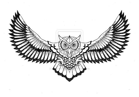 flying owl clipart free flying owl clipart images 21 images free clipart
