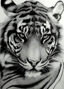 tattoo pluma m 225 s de 25 ideas incre 237 bles sobre tigres de la uanl en