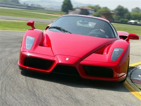 ferrari enzo my car ferrari quot wallpapers and photos auto ferrari