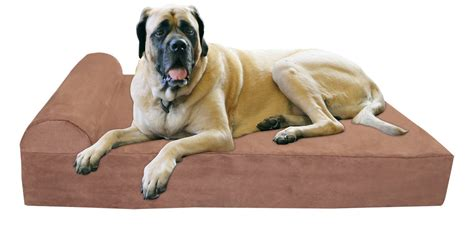 best dog bed for large dogs the very best dog beds for large dogs rover com