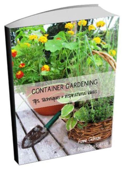 practical organic gardening the no nonsense guide to growing naturally books 113 best images about creative container gardens on