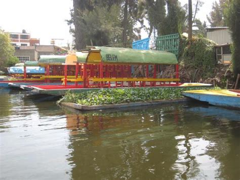 The Floating Gardens Of Xochimilco by A Mini Floating Garden Picture Of Floating Gardens Of