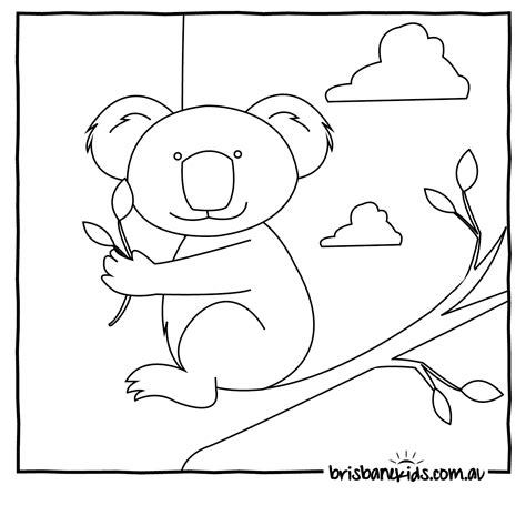 coloring animals australian animals colouring pages brisbane