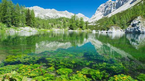 lake  mountain view slovenia wallpaperscom
