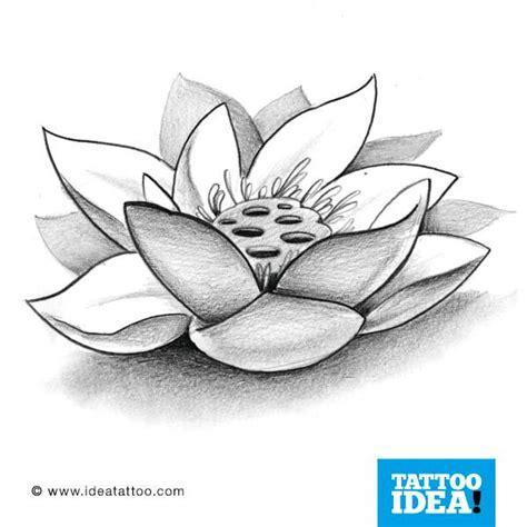 disegni fiore di loto tatuaggi fiore di loto cerca con tatoo thai