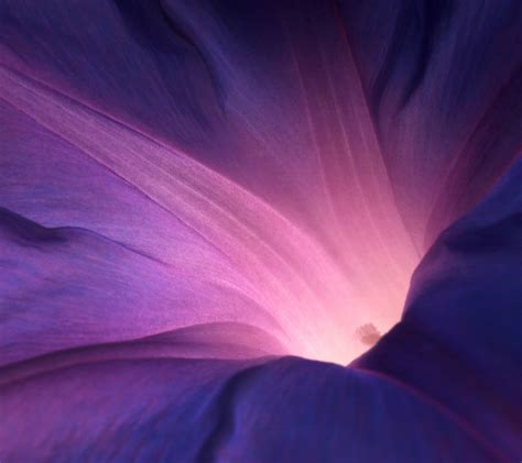 4k wallpaper for sony xperia z2 sony xperia z2 stock wallpapers download here