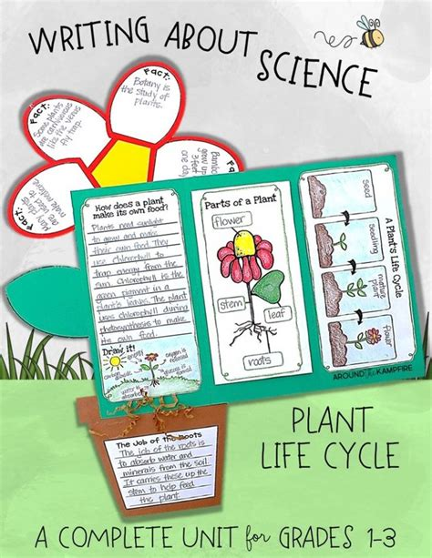plant life cycle lesson plans for 2nd grade life cycle it s plantin time writing about science a freebie