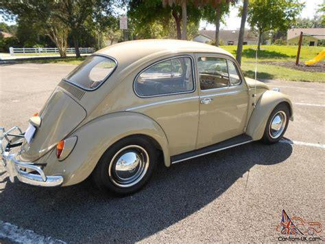 volkswagen beetle 1965 1965 volkswagen beetle coupe