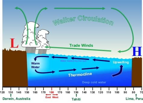 trade pattern of indonesia winter weather topics