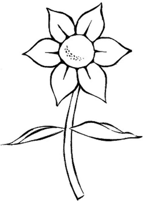 imagenes flores simples como desenhar flores simples