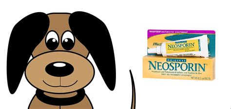 can i use neosporin on my can i put neosporin on my a to z pet care