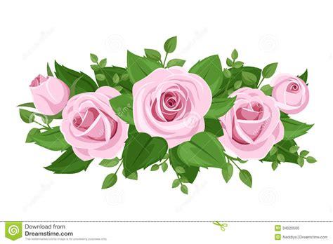 imagenes de rosas vectorizadas rosas capullos de rosa y hojas rosados ilustraci 243 n del