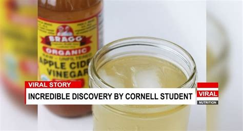 Rite Aid Golden Seal Detox by Best 25 Apple Cider Vinegar Capsules Ideas On