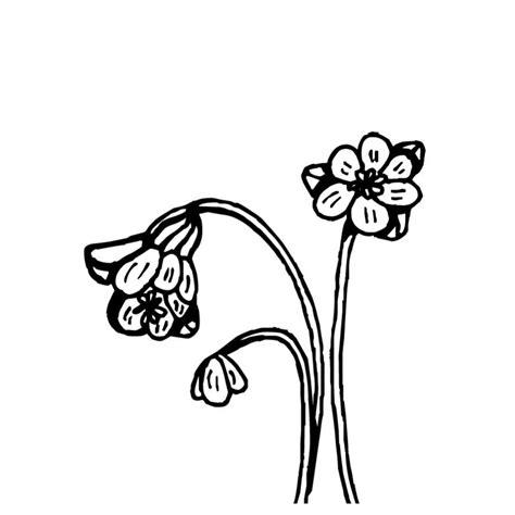 imagenes de flores marchitas flor marchita para colorear